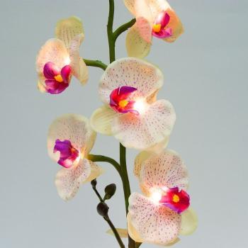 Орхидея в вазе. Цвет лепестков: сиреневый/розовый. 7 LED, теплый белый цвет свечения, 3*АА, 63*10см, PL307